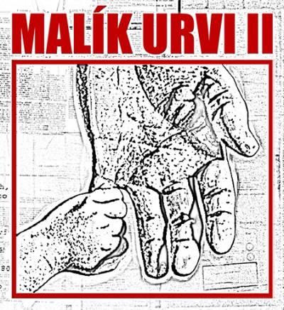 MALIK URVI II. Project Logo, 2010